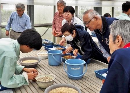 松江農林高等学校生物生産科3年生の生徒さんから、セッコクの植付けの指導を受け いざ挑戦!