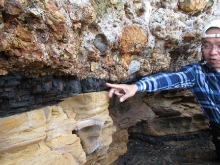 泥岩の中に含まれた木や葉っぱなどの有機物が熟成し 石炭へと変化していく途中段階 真っ黒!!