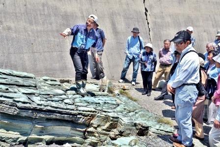 松本教授が「恵曇グリーン」と名付けたグリーンタフ(緑色凝灰岩)