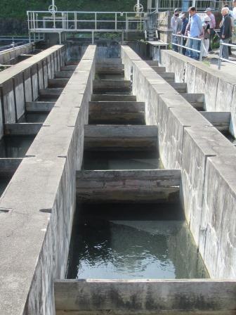 ブロック形成池で、水中のにごりや細菌などをフロックという固まりにします